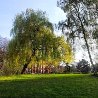 Ingress in the park